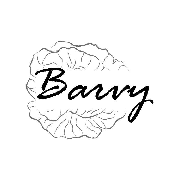 Barvy - бижута от смола, текстилни и плетени аксесоари